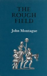 The Rough Field - John Montague